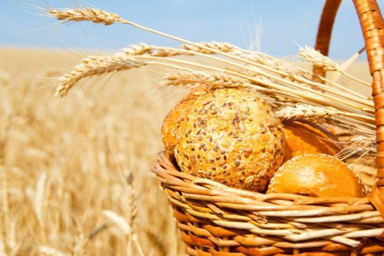 Welche Getreidesorten gibt es?